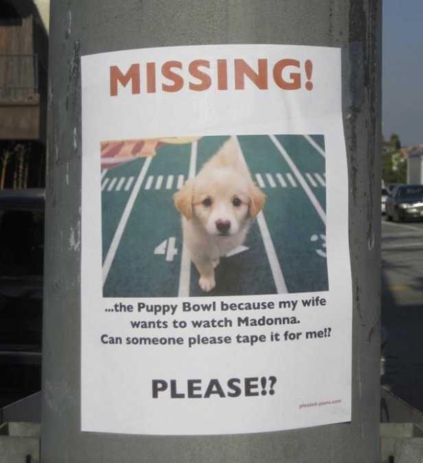 Puppy Lover