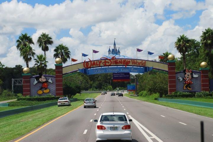 Mr. Disney