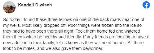 """""""These Three Fellows"""""""