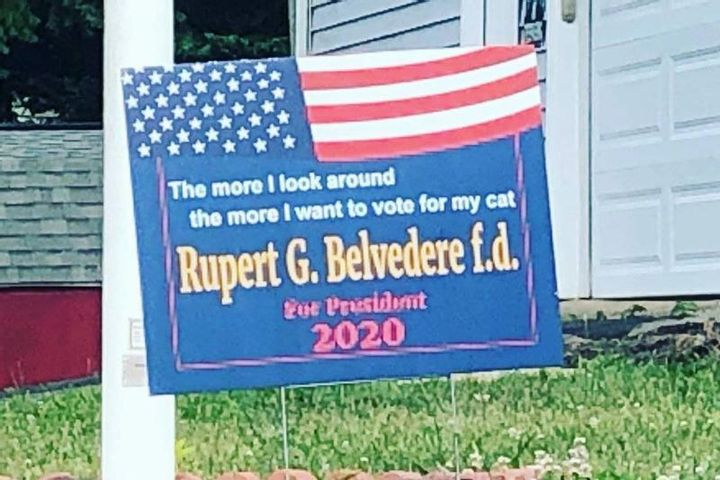 Vote for Rupert G. Belvedere f.d. the Kitty